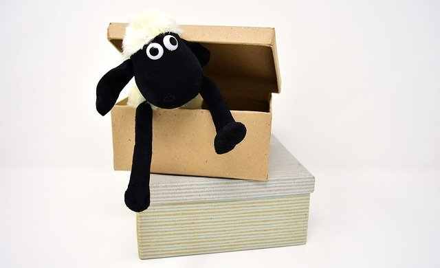 How to pack toys and books for shipping